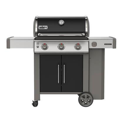 Picture of WEBER GENESIS II 61015001