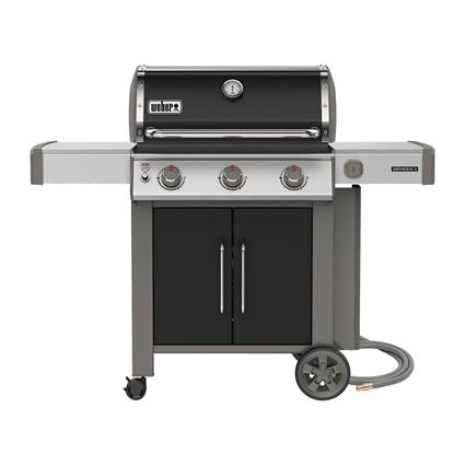 Picture of WEBER GENESIS II 66015001