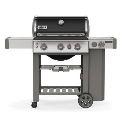 Picture of WEBER GENESIS II 61012001