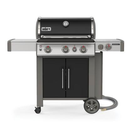Picture of WEBER GENESIS II 66016001