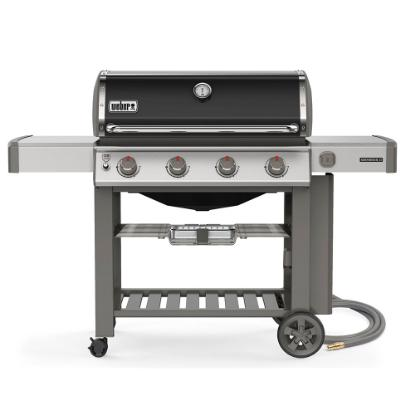 Picture of WEBER GENESIS II 67011001