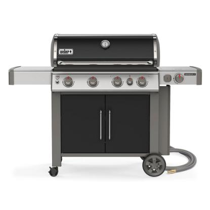 Picture of WEBER GENESIS II 67016001
